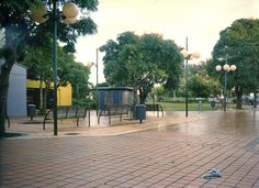 Fiona Amundsen, Pt. Chevalier, Auckland, 03.04.2004