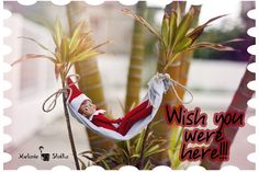 Postcard from an Elf - Plus links to TONS of Elf on the Shelf ideas :)