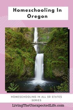 Homeschooling in oregon I LOVE Oregon! I was born and raised in the Portland, Oregon Homeschool Blogs, Homeschooling, Cascade Locks Oregon, Oregon Caves, Timberline Lodge, Oregon Living, Multnomah Falls, Wildlife Safari