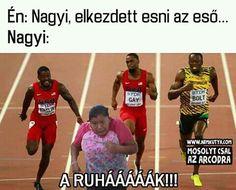 A leggyorsabb futó