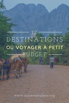 J'ai demandé à d'autres blogueurs qui partent fréquemment de partager leurs destinations de choix avec vous. Personnellement, je répondrais que mon chouchou pour voyager à petit budget est le Cambodge, un pays magnifique où les gens chaleureux et la nourr partez en voyage maintenant www.airbnb.fr/c/jeremyj1489