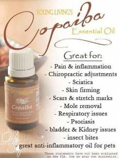 Young Living Essential Oils: Copaiba by Sugarbean