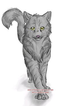 Graystripe Warrior cats *edit Finally a real looking Graystripe! Warrior Cats Series, Warrior Cats Books, Warrior Cats Fan Art, Amazing Drawings, Art Drawings, Scooby Doo Mystery Incorporated, The Dark Knight Trilogy, Love Warriors, Cat Boarding
