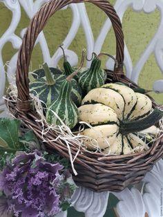 Купить Тыква декоративная натуральная. Урожай 2016 - тёмно-зелёный, тыква, украшение для интерьера