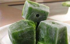 suco-verde-pode-tomar-todo-dia