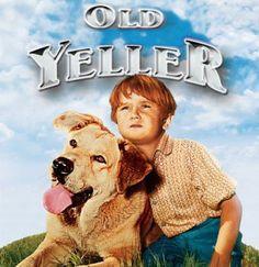 Loved this movie lol