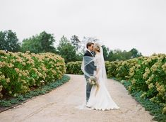 Velvet and gold palette accents October wedding at Pippin Hill.