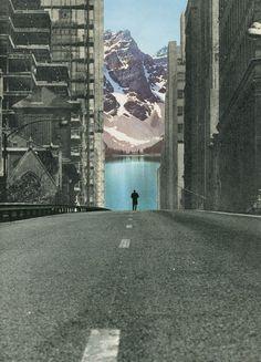 Into the Wild | Sammy Slabbinck
