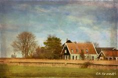 A typical old Dutch wooden House in Waterland, Holland.