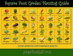Square Foot Garden Planting Guide » SHTF Preparedness    #LDSemergencyresources #MormonLink