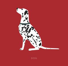VISUAL DICCTIONARY of NYC - mariadiamantes Dalmatian dog