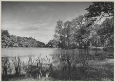 Alley Pond Park, Queens, 1936 | Photographer: Samuel H. Gottscho
