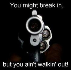Funny and or stupid signs about guns. Funny signs about the second amendment. Funny signs and quotes about gun control. Pro Gun, Home Defense, Self Defense, Gun Quotes, Survival, Ange Demon, Love Gun, Gun Rights, The Jacksons