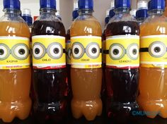 MINION_LABEL_BOTTLES