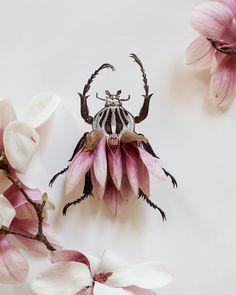 """garden """"wildlife"""" -- Magnolia bug no 4337 by kariherer on Etsy"""