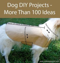 100 Great Dog DIY Projects to make diy craftprojects doglovers dog craftideas diygifts dogowners diydogstuff homemade dogstuff DogTricksTrainingTeaching Dog Clothes Patterns, Coat Patterns, Dog Jacket, Dog Sweaters, Diy Stuffed Animals, Pet Clothes, Dog Clothing, Diy Clothes For Dogs, Animal Clothes