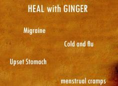 The many healing benefits and uses of ginger