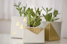 DIY gold leaf cement pots // View more: http://ruffledblog.com/diy-cement-centerpieces/