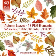 Digital Fall Leaves Clipart Leaf Doodle Orange by AnasGraphicArt