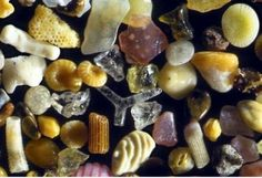 Sand viewed under a 250x microscope!