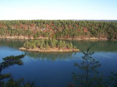 The Cliff Trail In Harpswell, Maine | In Search of Maine blog