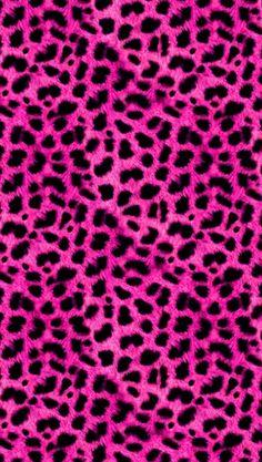 Leopard fucsia wallpaper