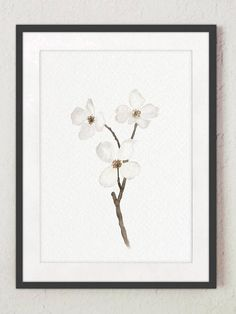 Dogwood Plant White Floral Canvas Art Print Anniversary Gift Idea. Beige Grey and White Tree Branch Watercolour Painting. Children Nursery Illustration Flower Baby Girl Baby Boy Minimalist Room Decoration. In the first Picture the Flower is printed on off-white canvas: Width: 24 -