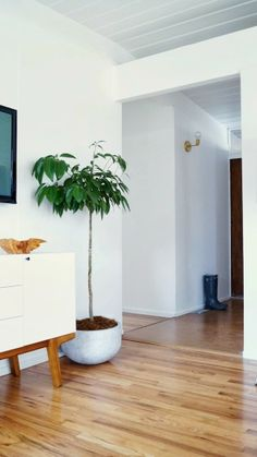 Grey and Scout | Interior Inspiration: RENOVATION WOES