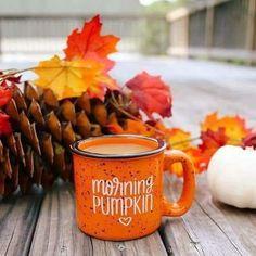 Easy, Homemade & Healthy PSL Creamer Recipe Morning Pumpkin - Fall Coffee Mug - Campfire Mug Autumn Coffee, Autumn Cozy, Autumn Fall, Autumn Tea, Autumn Leaves, Autumn Morning, Disney Home Decor, Autumn Aesthetic, Happy Fall Y'all
