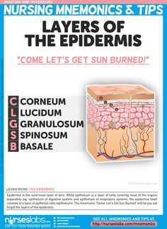 "Layers of the Epidermis  The mnemonic ""Come, Let's Get Sun Burned"" will let you not forget the layers of the epidermis.   Anatomy and Physiology Nursing Mnemonics & Tips: http://nurseslabs.com/anatomy-and-physiology-nursing-mnemonics-tips/"