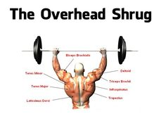If you are not happy with the way your upper body looks, especially your traps, you might want to change your exercise routine to include some overhead shrugs. Most weight lifters utilize the basic shrug method when exercising, but adding the ove