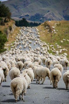 Traffic jam by Mathieu Savaria on 500px