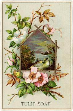 Lovely Wild Roses Card! - The Graphics Fairy