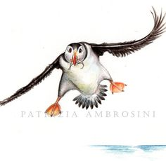 Original 9x7 Watercolour Puffin......NOT A PRINT         by Happyapplebumblebee