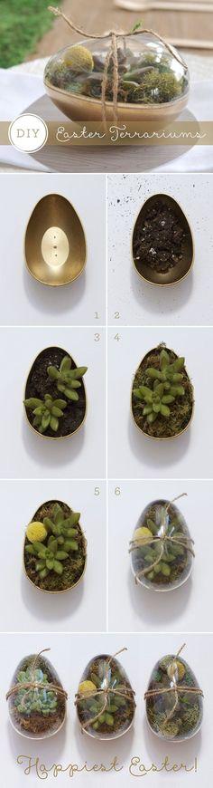 DIY easter gold eggs succulents: