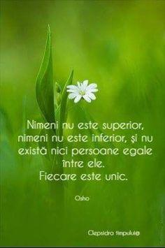 Osho, True Words, Perception, Cool Words, Qoutes, Spirituality, Abs, Healing, Faith
