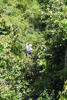 Jeanine going down one of Manuel Antonio Canopy Tour's zip-lines!