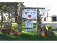 Lesser Farms and Orchard 12651 Island Lake Rd, Dexter, Michigan 48130 https://www.facebook.com/Lesser-Farms-and-Orchard-1408694636014154/timeline/?ref=stream