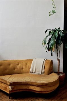 """I'm told this is called a """"piano couch"""" and I desperately want one for the guest bedroom!!"""