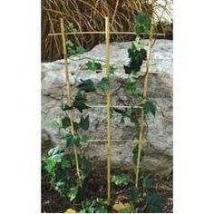 Bamboo Trellis Ladder/Fan 24in by A.M. Leonard. $63.99