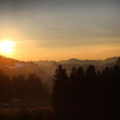 .@___linda_ | #sun #sunset #afterglow #forest #trees #countryside #landscape #ic_landscape Countryside Landscape, Shots, Trees, Hipster, Celestial, Sunset, Pictures, Outdoor, Instagram