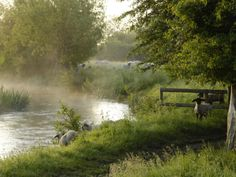 river windrush near burford, oxfordshire, the cotswolds -- photo by rob cousins