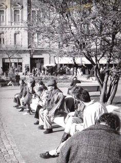 Hungary, Street View, City, Cities