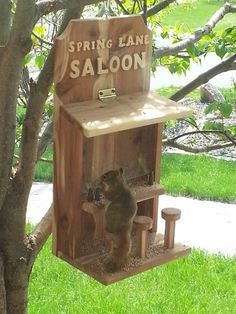 Saloon Bird Scratch The Squirrel Feeder DIY wood worki . - Saloon Bird Scratch The Squirrel Feeder DIY wood worki - Kids Woodworking Projects, Carpentry Projects, Diy Wood Projects, Woodworking Tips, Wood Crafts, Woodworking Furniture, Woodworking Workbench, Workbench Plans, Woodworking Machinery