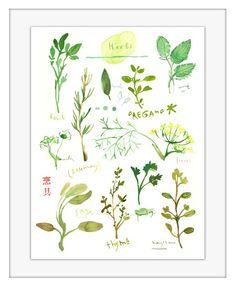 Herbs Large poster Kitchen art Food Watercolor von lucileskitchen