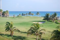 There are many Caribbean golf courses, but there are a few that consistently rank favourably in top ten lists. Get suggestions for your next golf escapade. Jamaica Resorts, Jamaica Travel, Inclusive Resorts, Vacation Resorts, Cruise Travel, Honeymoon Destinations, Best Vacations, Beach Resorts, Weekend Vacations