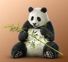 Panda from Tekken 7: Fated Retribution