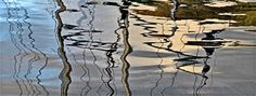 Harbour reflections Photograph by Carol Green
