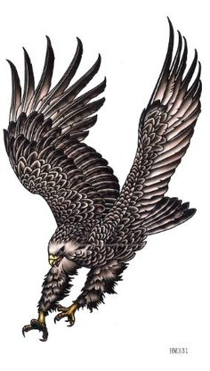 Eagle wings waterproof long lasting tattoo stickers from King Horse. Eagle Images, Eagle Pictures, Hawk Tattoo, Eagle Drawing, King Horse, Eagle Wings, Eagle Tattoos, Eagle Art, Black Eagle