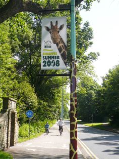 Zoo Signage, Signage Design, Zoo Decor, Akron Zoo, Zoo Logo, Zoo Architecture, Zoo Giraffe, Zoo Project, Zoo Park